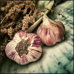garlic with vitamin c to decrease high blood pressure levels naturally