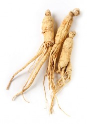 ginseng to boost nitric oxide levels and erection quality