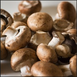 white button mushrooms lower estrogen via inhibiting aromatase