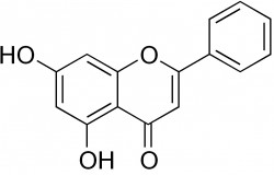 what is chrysin