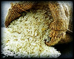 rice lowers testosterone and dht