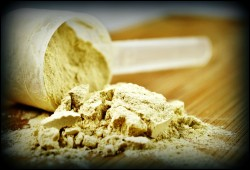 dietary protein intake and testosterone levels