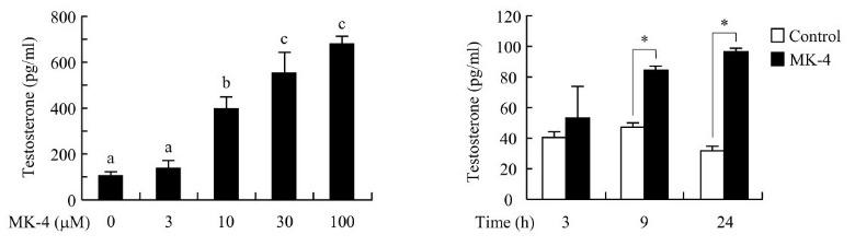 testosterone and vitamin K2