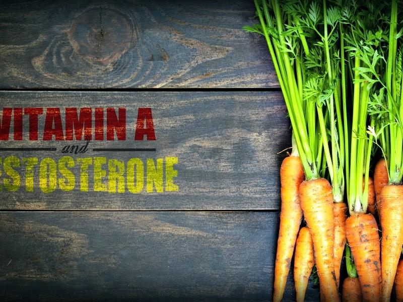 vitamin a testosterone levels