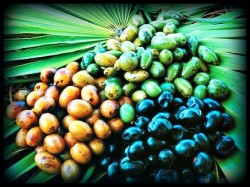saw palmetto increases testosterone but inhibits 5-alpha reductase