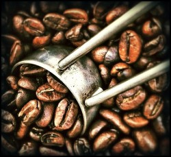 caffeine and coffee as fat reducing supplements