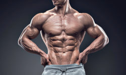 testosterone fat loss