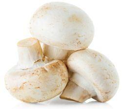 white button mushrooms reduce gyno