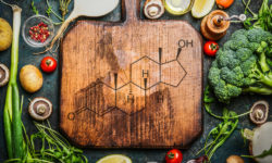 do vegan diets lower testosterone levels