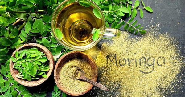 moringa leaves, powder, and tea